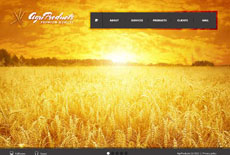 颜色艳丽的网页设计